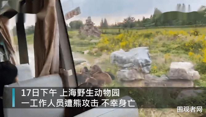 太可惜! 上海被熊咬身亡的飼養員是個拆遷戶 網友:可能是獨生子-圖2