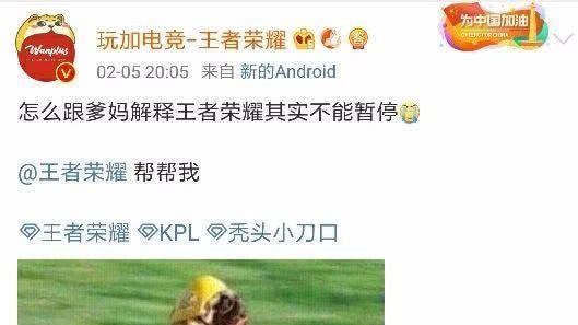 """近期王者荣耀中挂机玩家增加, 玩家常被迫要求""""暂停""""游戏"""