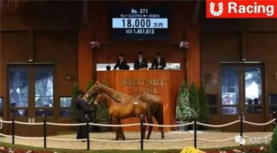 日本赛马到底发展到什么程度了? 从拍卖会最高价5.8亿日元说起