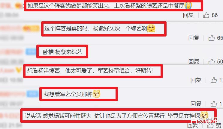 《中餐廳》收官兩年後, 楊紫新綜被曝將襲, 看清搭檔陣容不淡定瞭-圖8