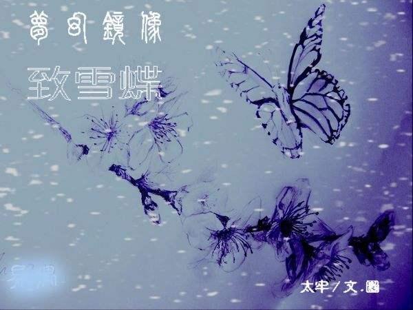 天空中为什么会降下无法解释的雪蝶呢? 科学家至今无法解释的谜题
