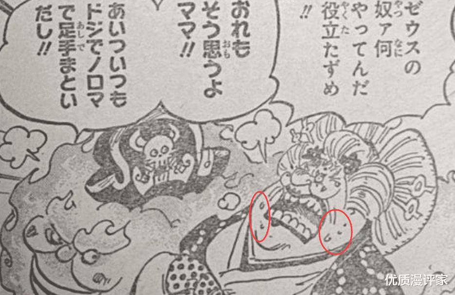 """海賊王第1010話: 索隆打得凱多跪地, 未來""""王副""""之名當之無愧!-圖2"""
