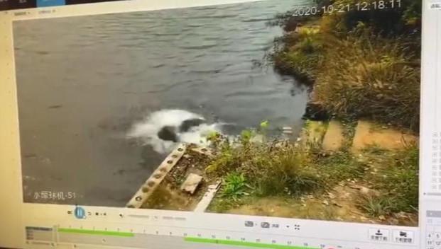 女子將同伴推落水庫,兩人均溺亡-圖4