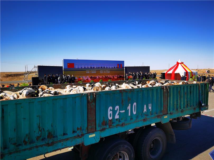 中蒙舉行蒙古向中國捐贈羊交接儀式-圖2