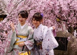 日本人诱发秃顶的三个主要原因