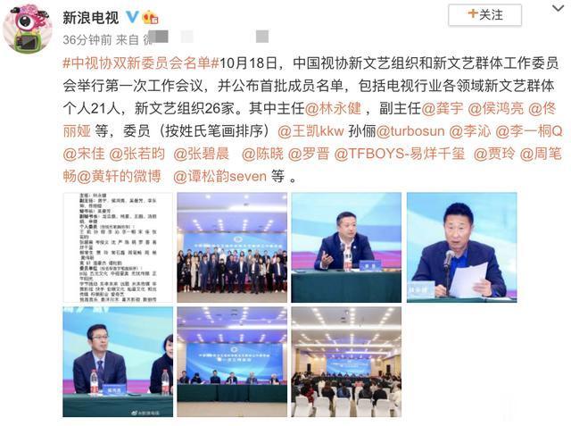 首批中視協雙新委員會名單: 譚松韻千璽當選, 但沒佟麗婭級別高-圖1