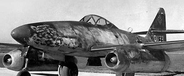 蛇能長多長? 二戰時, 英國飛行員拍到一條巨蟒, 現已成未解之謎-圖2
