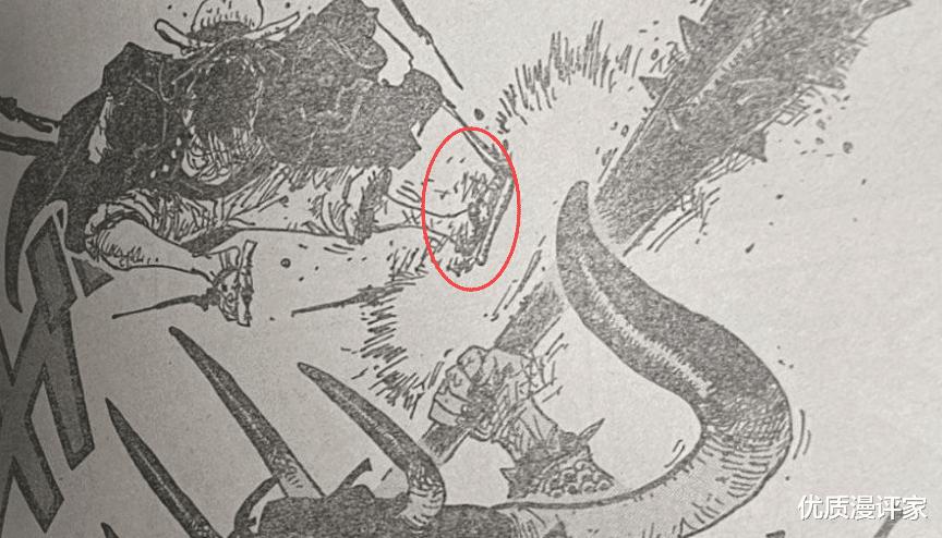 """海賊王第1010話: 索隆打得凱多跪地, 未來""""王副""""之名當之無愧!-圖6"""