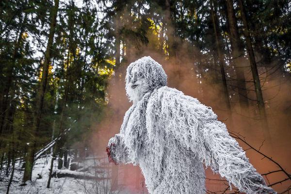 DNA揭秘: 传说中的雪人到底是什么