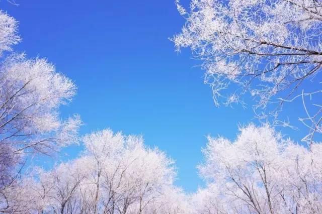 冬日自驾白色世界!来吉利不虚此行!