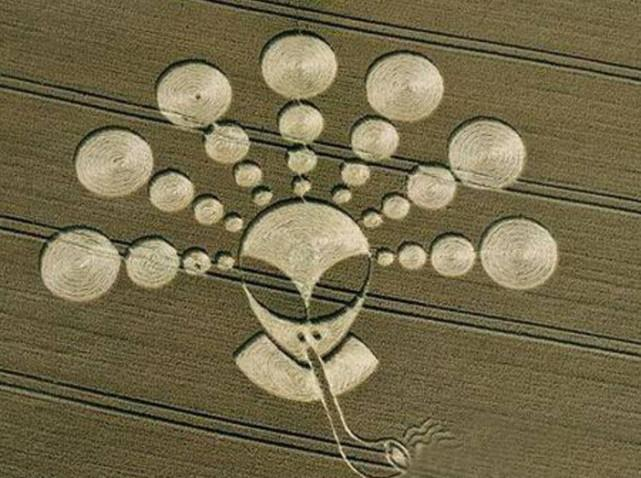 UFO麦田怪圈到底是何产物? 外星人赠送给地球人的星际地图