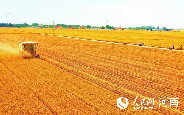 前三季度河南省重點項目主要指標超額完成目標任務-圖2