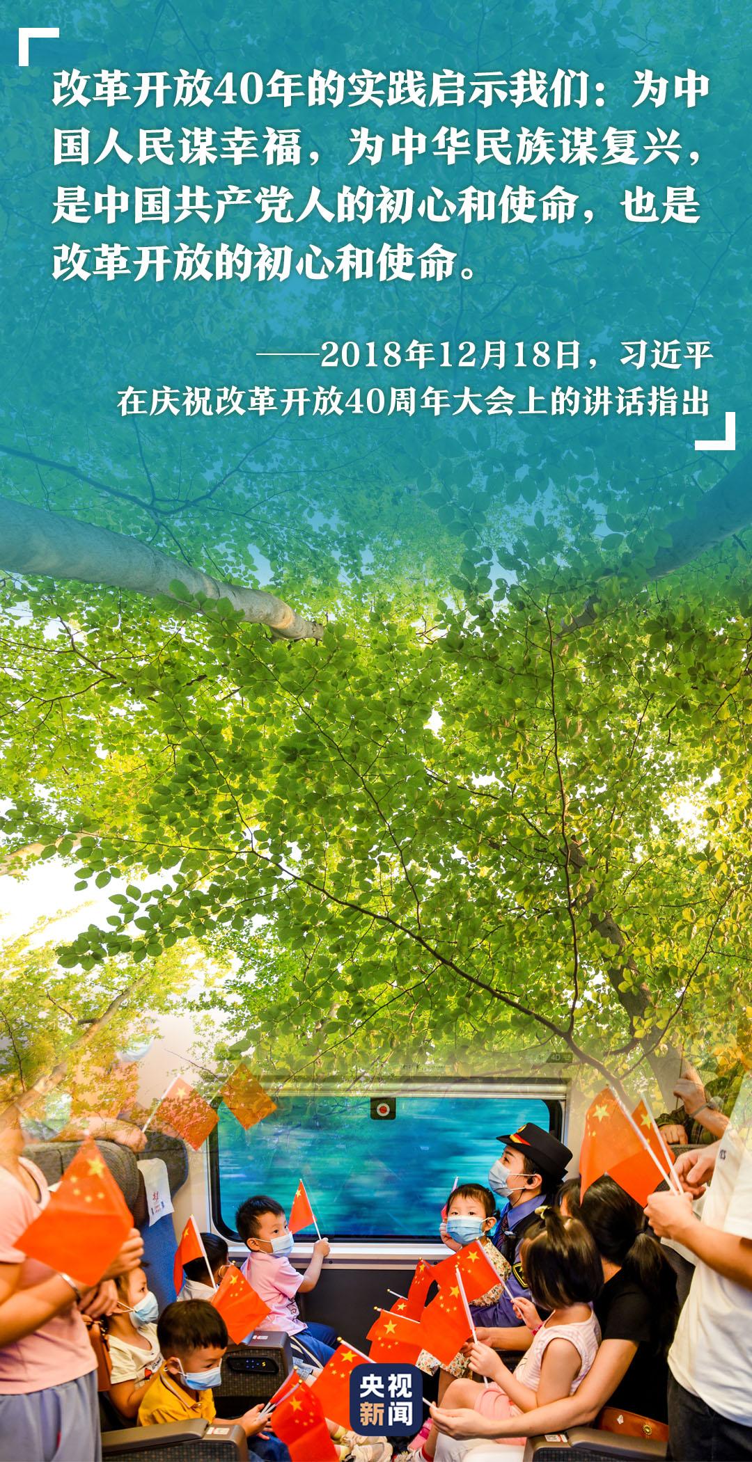 高山榕樹印初心-圖11