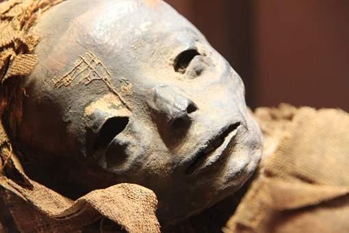 古代木乃伊的DNA证实了百年以来乙肝的存在