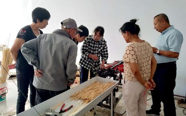 """富裕县""""王大姐"""": 靠技术摘掉贫困帽"""