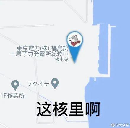 日本還要為排污詭辯嗎? 福島魚親自下海打臉瞭!-圖11